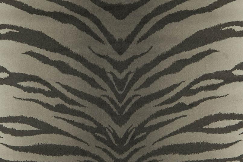 Tigris_049