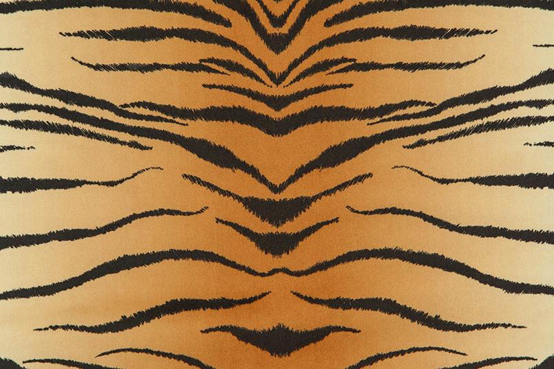 Tigris_069