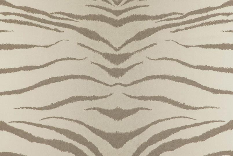 Tigris_078