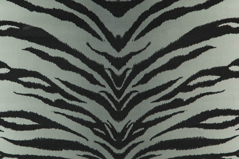 Tigris_079