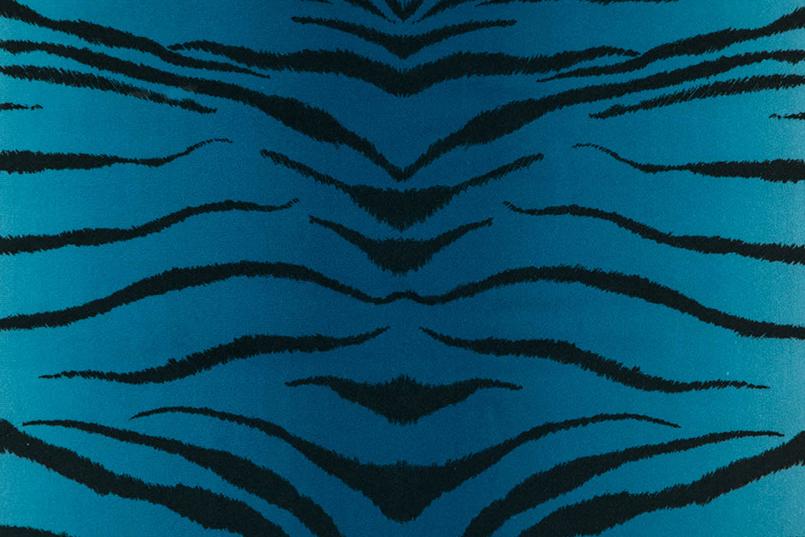 Tigris_089