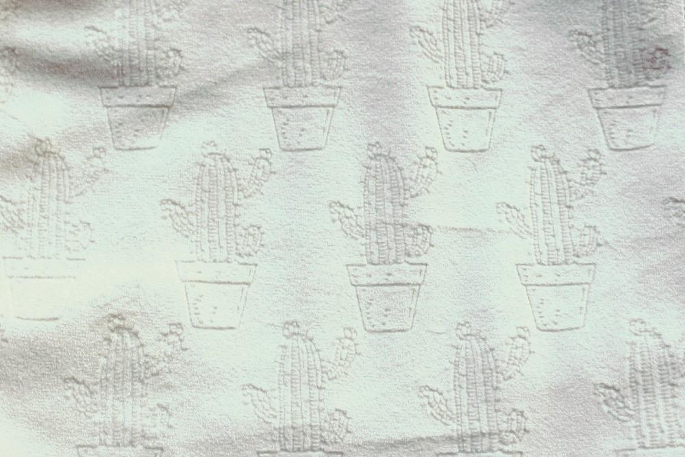 Cactus_PF01