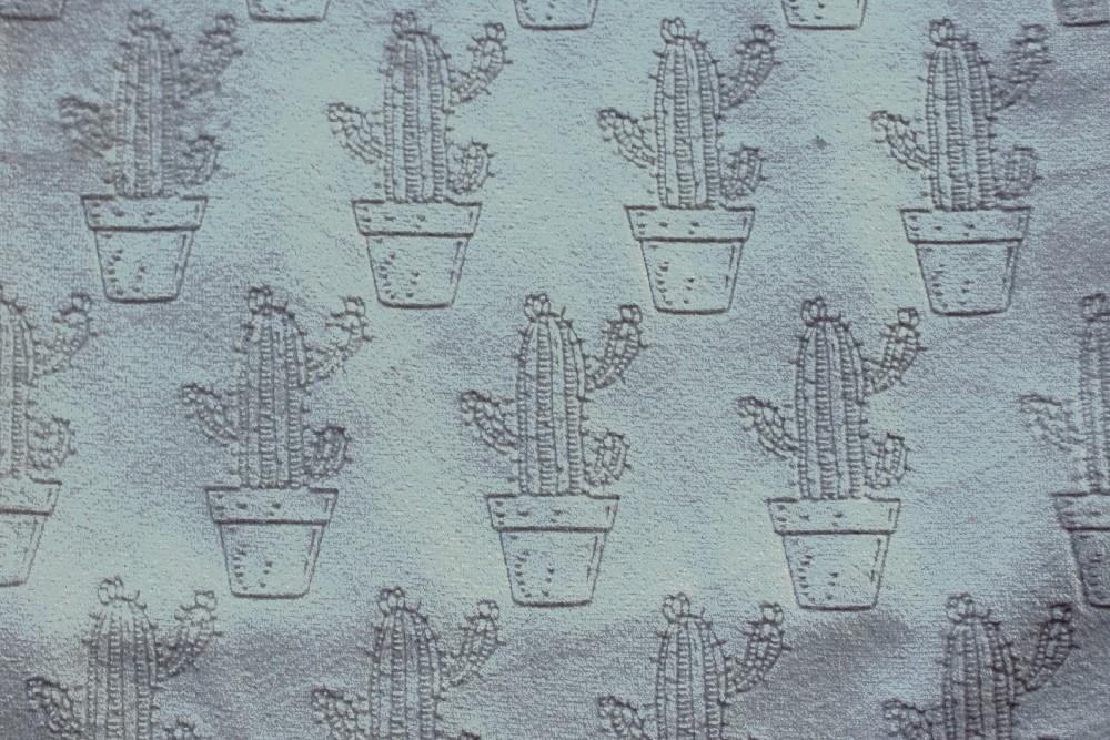 Cactus_PF02