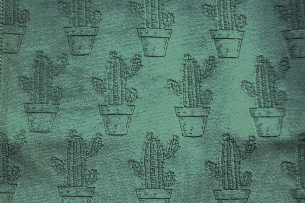 Cactus_PF03