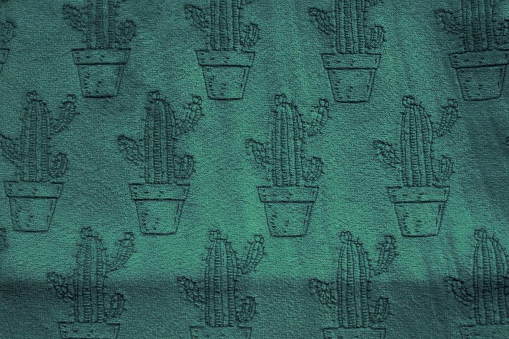 Cactus_PF04