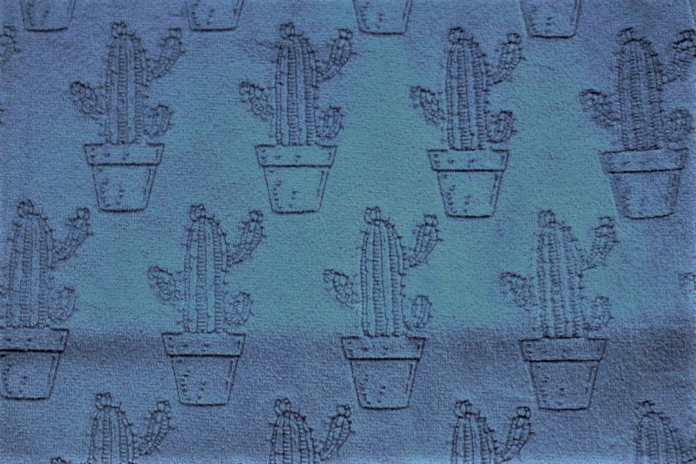 Cactus_PF05