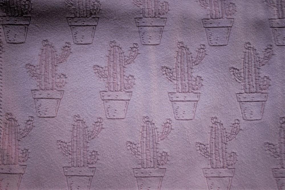 Cactus_PF06